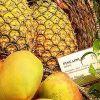 ananas-mango